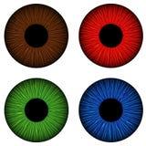 Uppsättning av irins för mänskliga ögon Bown rött, grönt och blått Fotografering för Bildbyråer