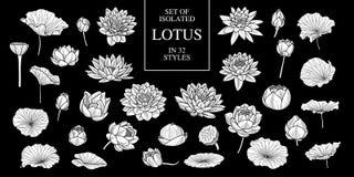 Uppsättning av isolerad vit konturlotusblomma i 32 stilar Gullig hand dragen blommavektorillustration i den vita nivån och ingen  Royaltyfria Bilder
