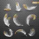 Uppsättning av isolerade guld- fallande vita fluffiga snurrade fjädrar på genomskinlig bakgrund i realistisk stil vektor Arkivbilder