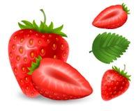 Uppsättning av jordgubbebär Arkivfoton