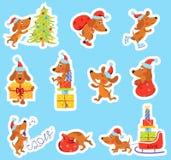 Uppsättning av jul, klistermärkear för nytt år med den gulliga hunden Fotografering för Bildbyråer