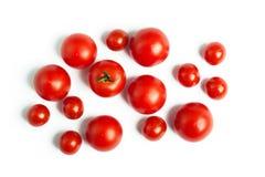 Uppsättning av körsbärsröda tomater Royaltyfri Bild