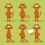 Uppsättning av katter med sinnesrörelser Arkivfoto
