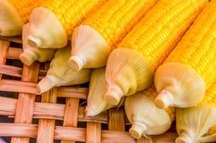 Uppsättning av kokt majs på bambumagasinet Royaltyfri Foto