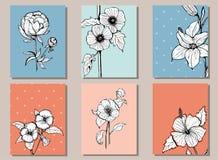 Uppsättning av kort med botanikillustrationer Royaltyfri Foto
