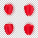 Uppsättning av kronblad av en röd ros på en genomskinlig bakgrund För ditt romantiska projekt Bröllop dag för valentin` s petals  stock illustrationer
