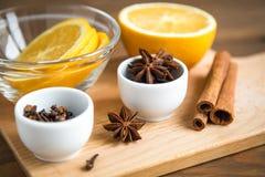 Uppsättning av kryddor för funderat vin: apelsin stjärnaanis, anis, cinnam Arkivfoto