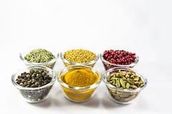 Uppsättning av kryddor i exponeringsglas Fotografering för Bildbyråer