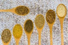 Uppsättning av kryddor på det vita bladet. Royaltyfria Bilder