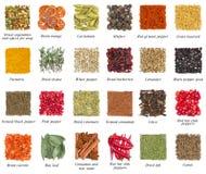Uppsättning av kryddor som isoleras på vit royaltyfria foton