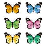Uppsättning av kulöra fjärilar