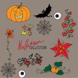 Uppsättning av kulöra halloween för fe symboler Royaltyfri Bild