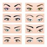 Uppsättning av kvinnligögon och ögonbryn Vektorillustration, EPS10 Arkivfoton
