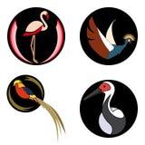 Uppsättning av ljusa fåglar på svartcirklar för logo royaltyfri illustrationer