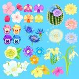 Uppsättning av lotusblommablommor, japansk körsbär, orkidé, kaktus vektor Arkivfoton