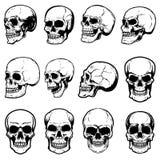 Uppsättning av mänskliga skalleillustrationer på vit bakgrund Planlägg beståndsdelen för etiketten, emblemet, tecknet, logoen, af vektor illustrationer