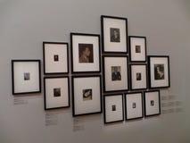 uppsättning av målningar Royaltyfri Foto