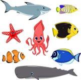 Uppsättning av marin- djur Fotografering för Bildbyråer