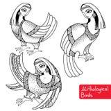 Uppsättning av Mithological fåglar med huvudet av kvinnan Vektor Illustrationer
