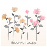 Uppsättning av mjuka rosa blom- och trädgårds- blommor, botaniskt nat royaltyfri illustrationer