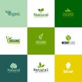 Uppsättning av moderna naturlig och organisk produktlogomallar och ic Royaltyfri Foto