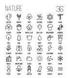 Uppsättning av natursymboler i den moderna tunna linjen stil Arkivbilder