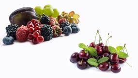 Uppsättning av nya frukter och bär Mogna blåbär, björnbär, röda vinbär, druvor, hallon och plommoner Arkivbilder