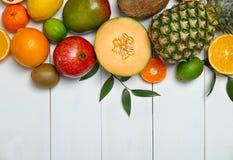 Uppsättning av nya tropiska frukter royaltyfria foton
