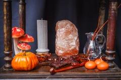 Uppsättning av objekt som firar halloween Royaltyfri Foto