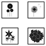 Uppsättning av olika abstrakta blommaillustrationer Royaltyfri Bild