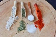 Uppsättning av olika aromatiska färgrika kryddor arkivfoton