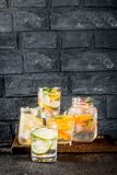 Uppsättning av olika citrusa drinkar Royaltyfri Foto