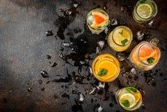 Uppsättning av olika citrusa drinkar Royaltyfri Bild