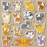Uppsättning av olika gulliga katter, vektorklistermärkear stock illustrationer