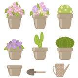 Uppsättning av olika houseplants Fotografering för Bildbyråer