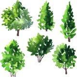 Uppsättning av olika lövfällande träd Royaltyfri Fotografi