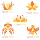 Uppsättning av 5 orange exotiska blom- logoer Arkivbild