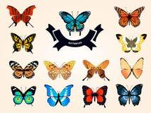 Uppsättning av orange realistiska fjärilar Arkivfoto