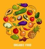 Uppsättning av organisk mat Arkivfoto