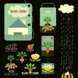 Uppsättning av organiska och för lantgård för ny mat emblem och Royaltyfri Fotografi