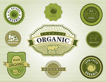 Uppsättning av organiska och naturliga matetiketter Arkivfoton