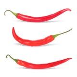 Uppsättning av peppar för varm chili. Royaltyfri Bild