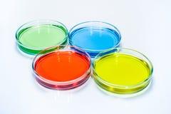 Uppsättning av Petri disk med kulör flytande Royaltyfri Fotografi