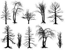 Uppsättning av pinneträd Arkivfoto