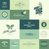 Uppsättning av plana designsymboler för naturliga organiska produkter Royaltyfri Bild