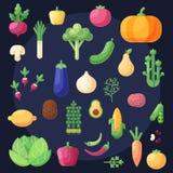 Uppsättning av plana färgrika symboler och beståndsdelar med grönsaker och frukter Royaltyfri Bild