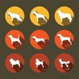 Uppsättning av plana symboler med hundkapplöpningkonturer Arkivbilder