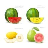 Uppsättning av polygonal frukt - vattenmelon, gul vattenmelon, melon, G Royaltyfria Bilder