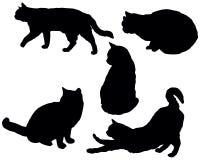 Posera katter stock illustrationer