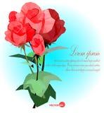 Uppsättning av röda rosor med blad- och stamvektorillustrationen för kortet, baner, affischer Royaltyfria Bilder